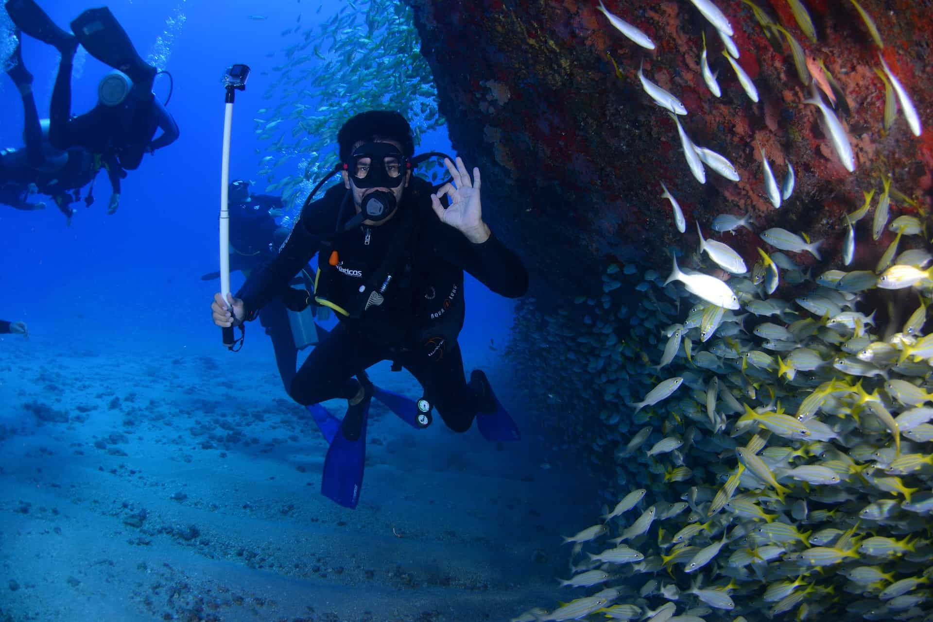 Best Scuba and Free Diving Apps